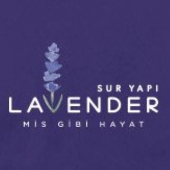 SURYAPI LAVENDER